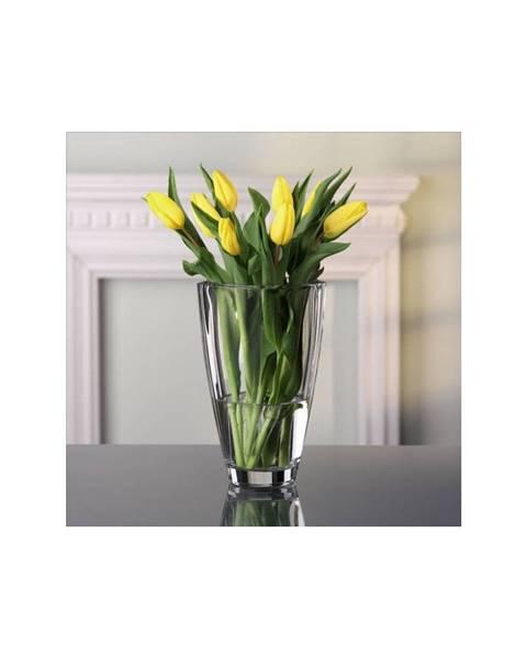 Váza Nachtmann
